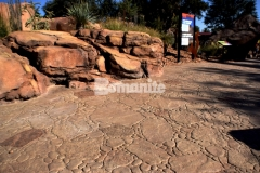 Bomanite Imprint Systms with the Bomacron Garden Stone pattern and natural English Slate texture were used here to create a realistic replication of desert rock riverbed landscape, adding a distinct, decorative touch to the Chihuahuan Desert exhibit at the El Paso Zoo.