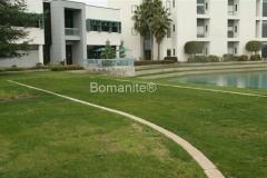 Bomanite Concealed Grasscrete Concrete Emergency Vehicle Access