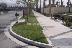 Bomanite Grasscrete Stone Filled Concrete